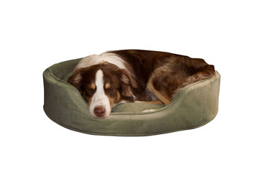 PAW Cuddle Round Suede Terry Pet Bed, Large