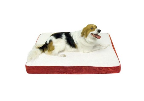 Oscar Orthopedic Dog Bed, Large (36 x 48in.), Crimson